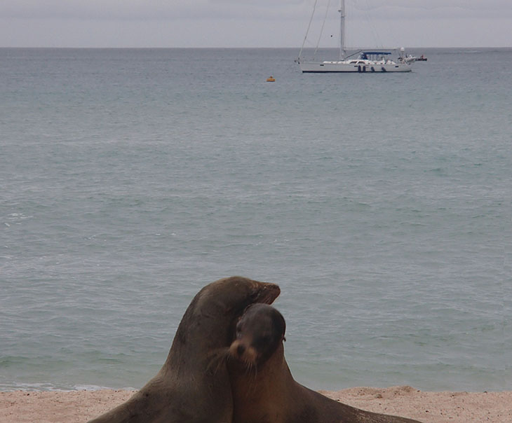 VOO DOO, Hylas 70, anchored offshore in the Galapagos